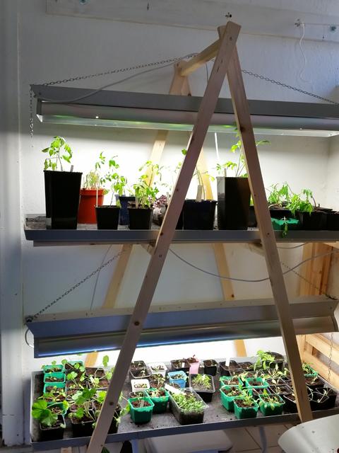 plantbord