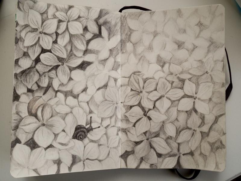 teckning-2