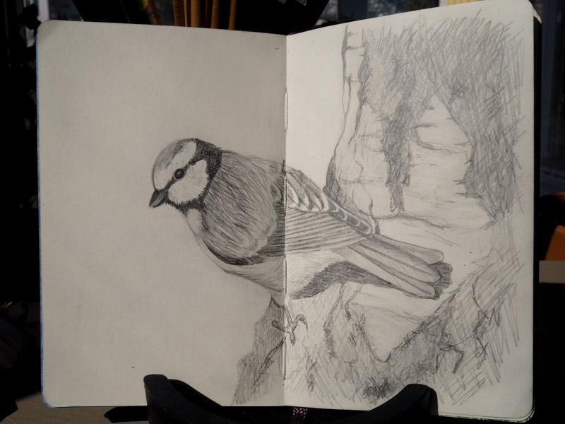 teckning-4