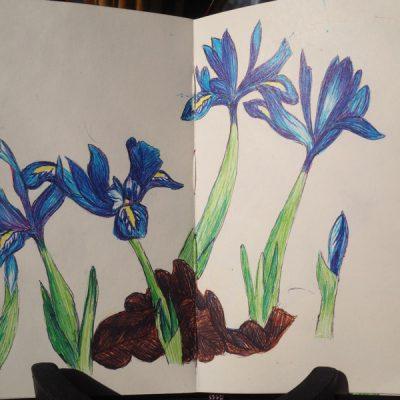 Att teckna och måla lite