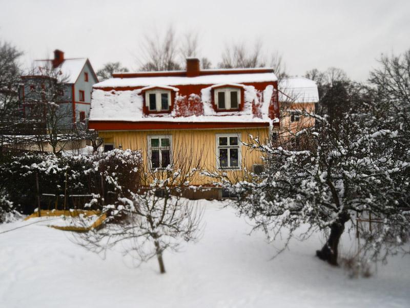 vinter-36