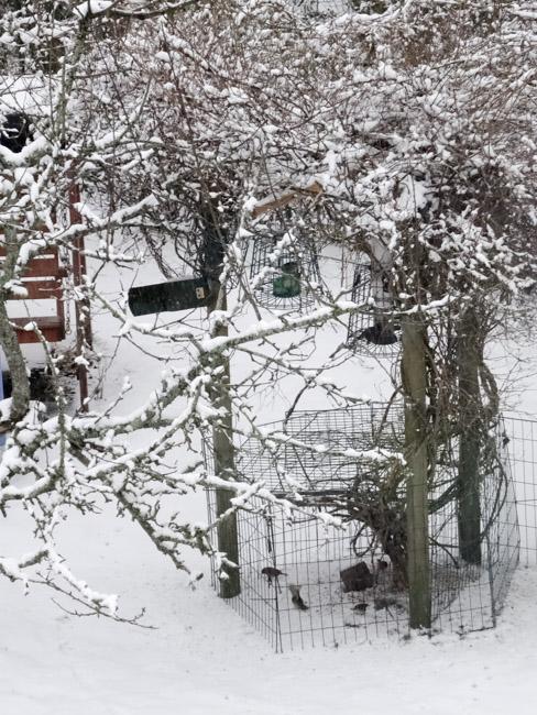 vinter-8