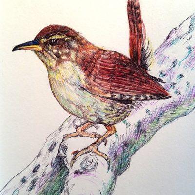 Att måla med bläckpennor
