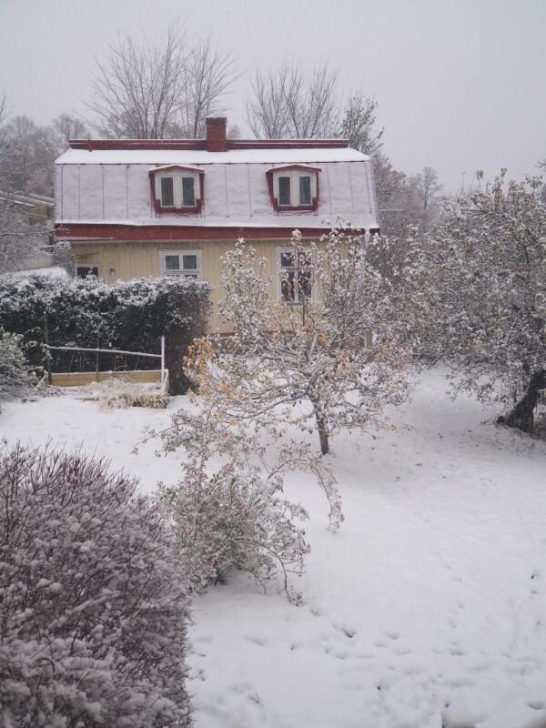 Första snön 2016