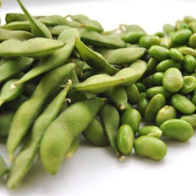 Sojabönan – är det en hållbar ersättning för kött?