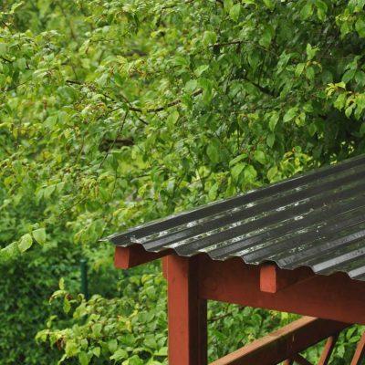 Att regna eller inte regna